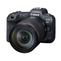 Canon EOS R5 RF24-105mm f4 L IS USM